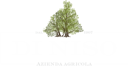 Logo_AzAgrDiniso_bianco